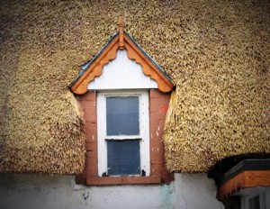Thatch window